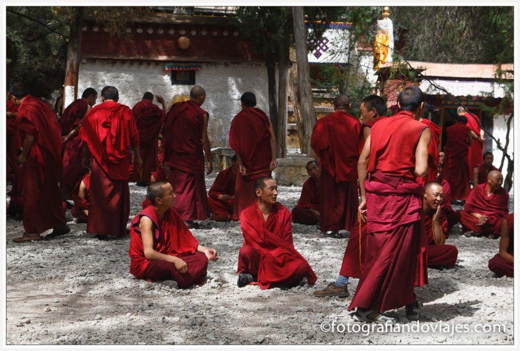 Debate en el monasterio de Sera