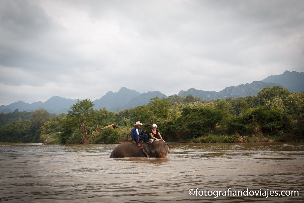 campamento de elefantes en Luang Prabang
