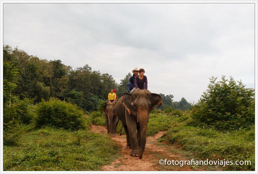 Campamento de elefantes en Laos