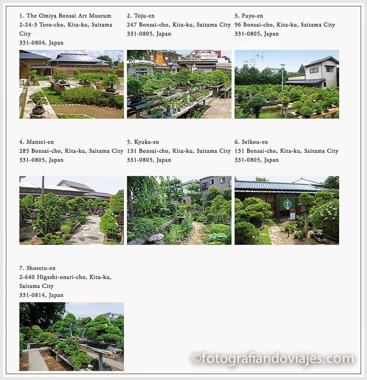 jardines de bonsais en Omiya, Japon