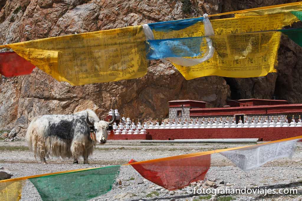 Lago Namtso Tibet