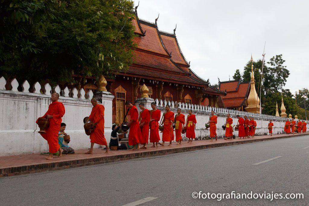 ceremonia de los monjes de Luang prabang en laos