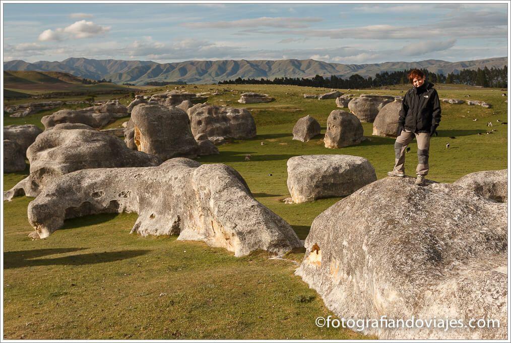 Elephant rock Nueva Zelanda