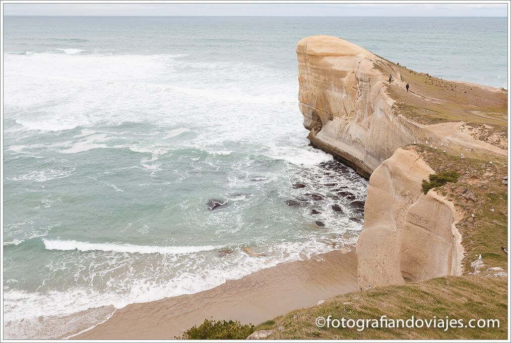 Tunnel beach dunedin nueva zelanda