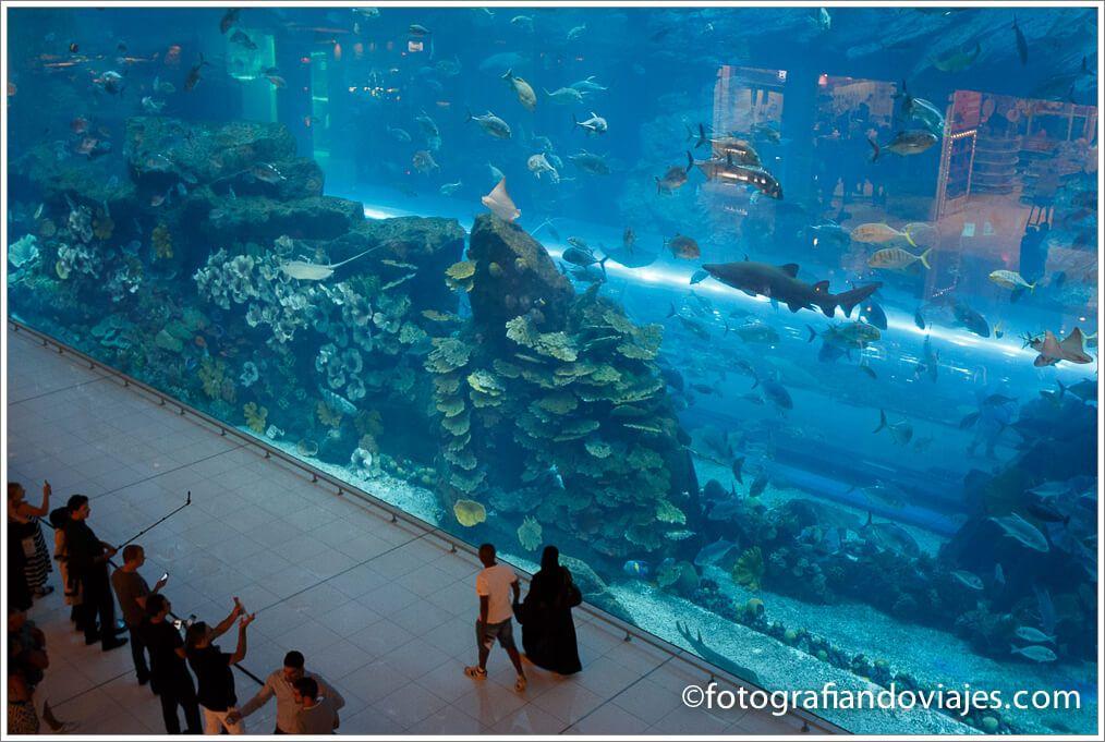 Acuario del Dubai Mall