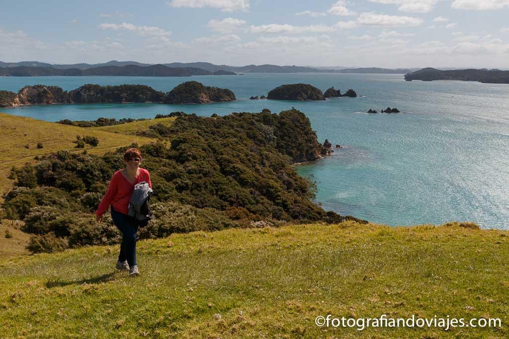Bahia de las islas Nueva Zelanda