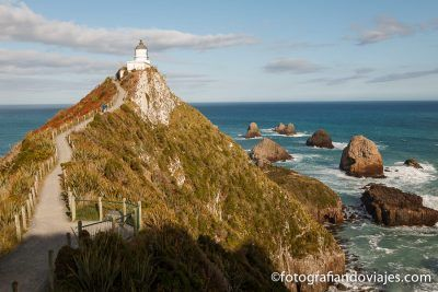 Southern scenic route Nueva Zelanda Nugget Point