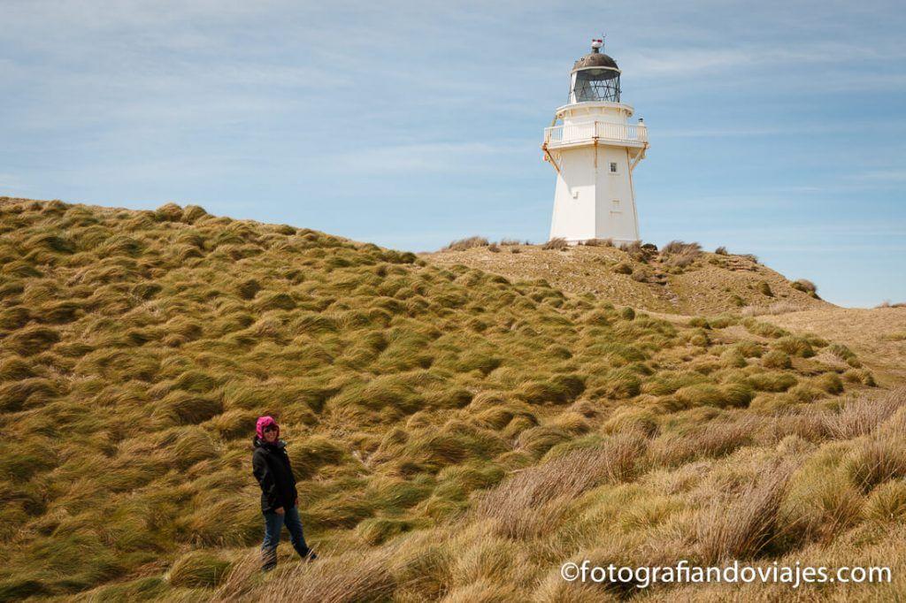 Southern scenic route Nueva Zelanda Waipapa point