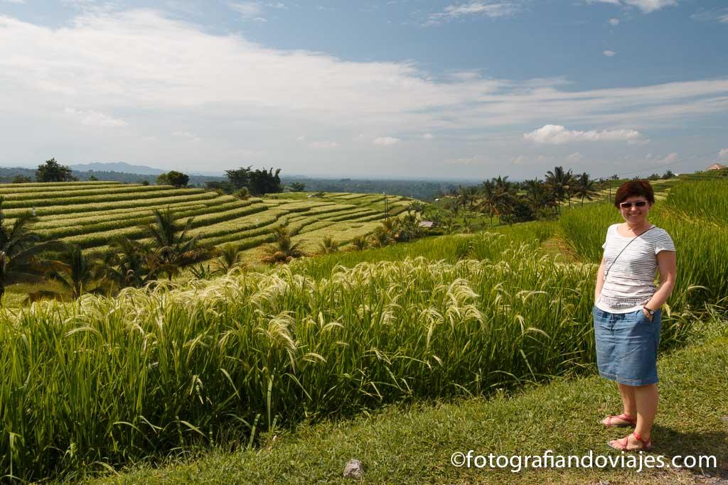 Arrozales de Jatiluwith Bali indonesia