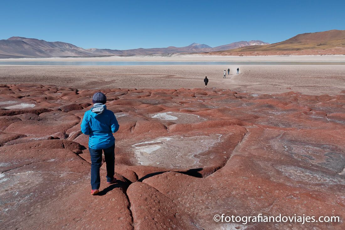 Piedras Rojas desierto Atacama Chile