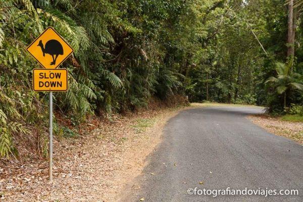 Cabo Tribulation Australia