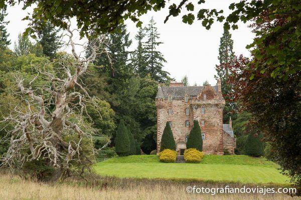 castillo leod