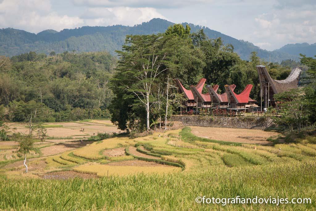 Que ver en Indonesia Toraja