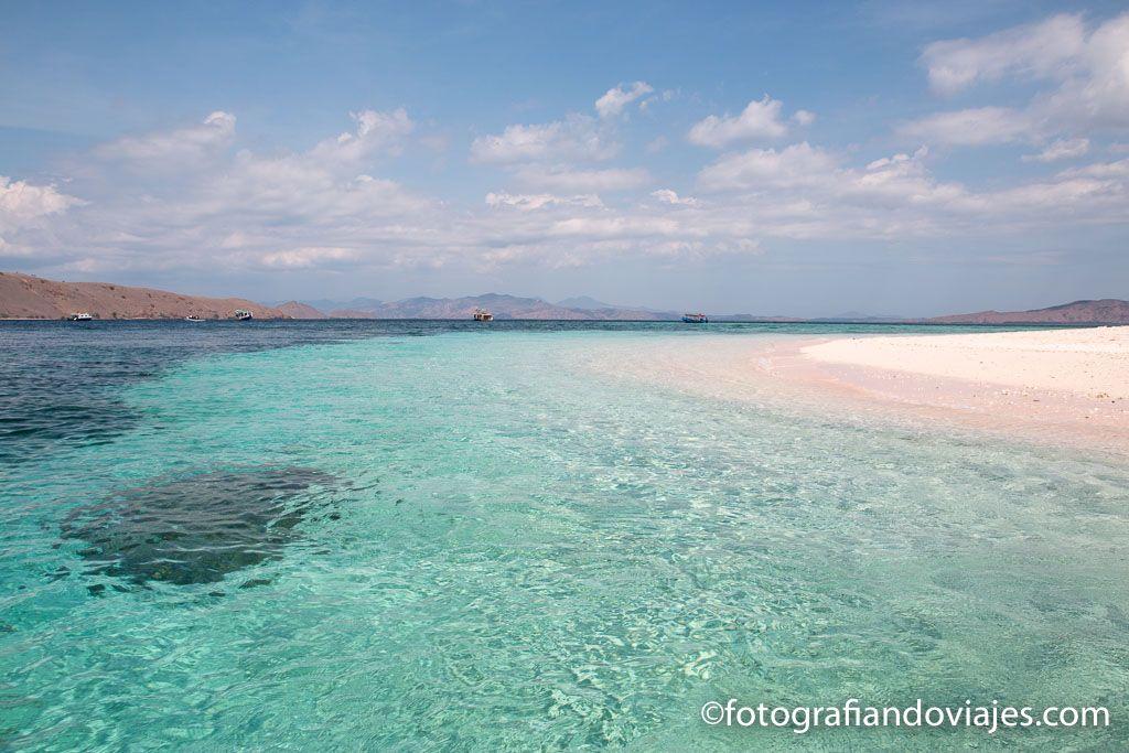 Playa rosa en Parque nacional Komodo Flores Indonesia