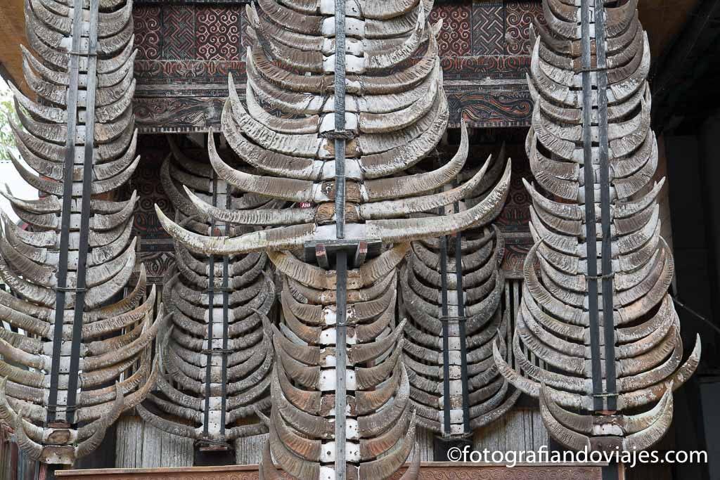 Como es un funeral Tana Toraja