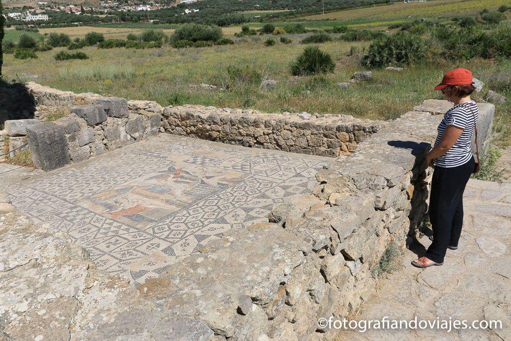 mosaicos ruinas romanas Volubilis