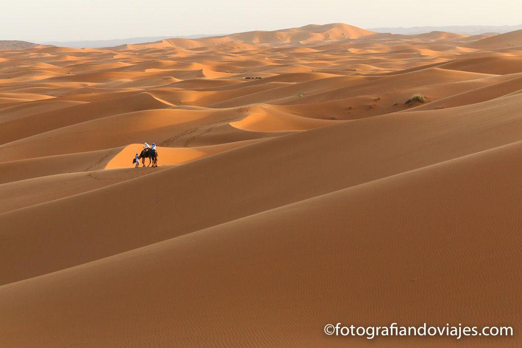 Dunas naranjas desierto