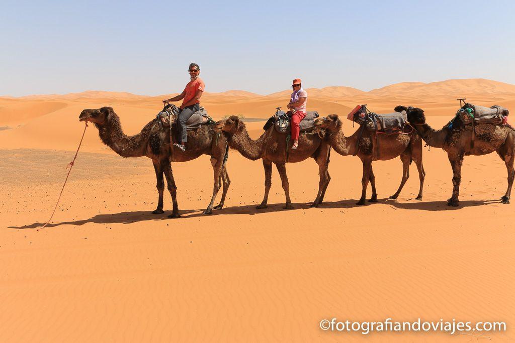 Recorrido en camello por el desierto