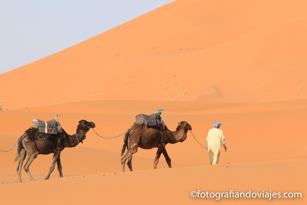 Recorrido en camello