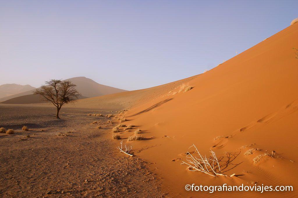 Arena rojo del desierto Namib