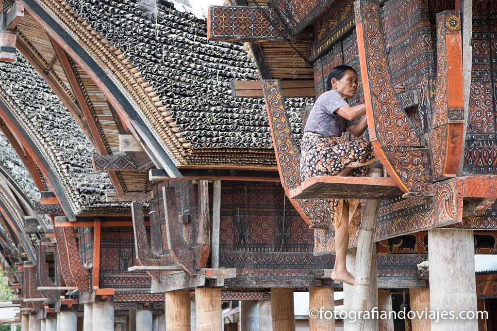 Palawa que ver en Sulawesi