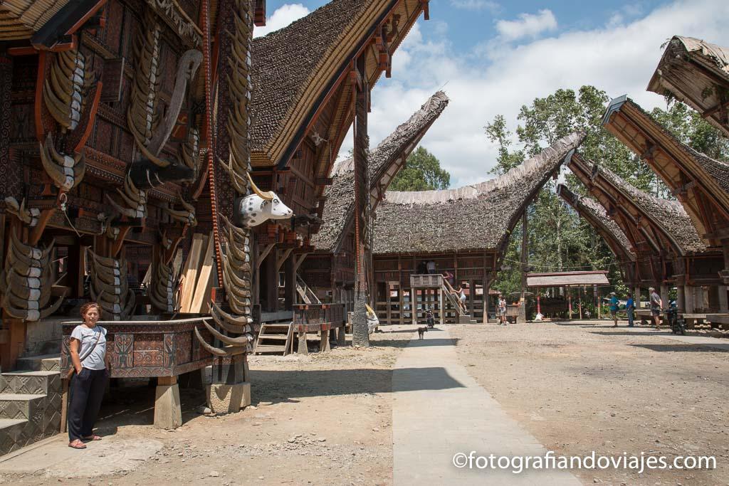 Palawa que ver en Indonesia