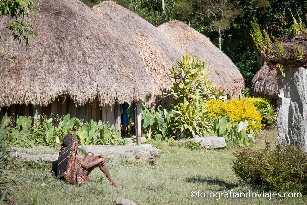 Poblado dani en el valle de Baliem