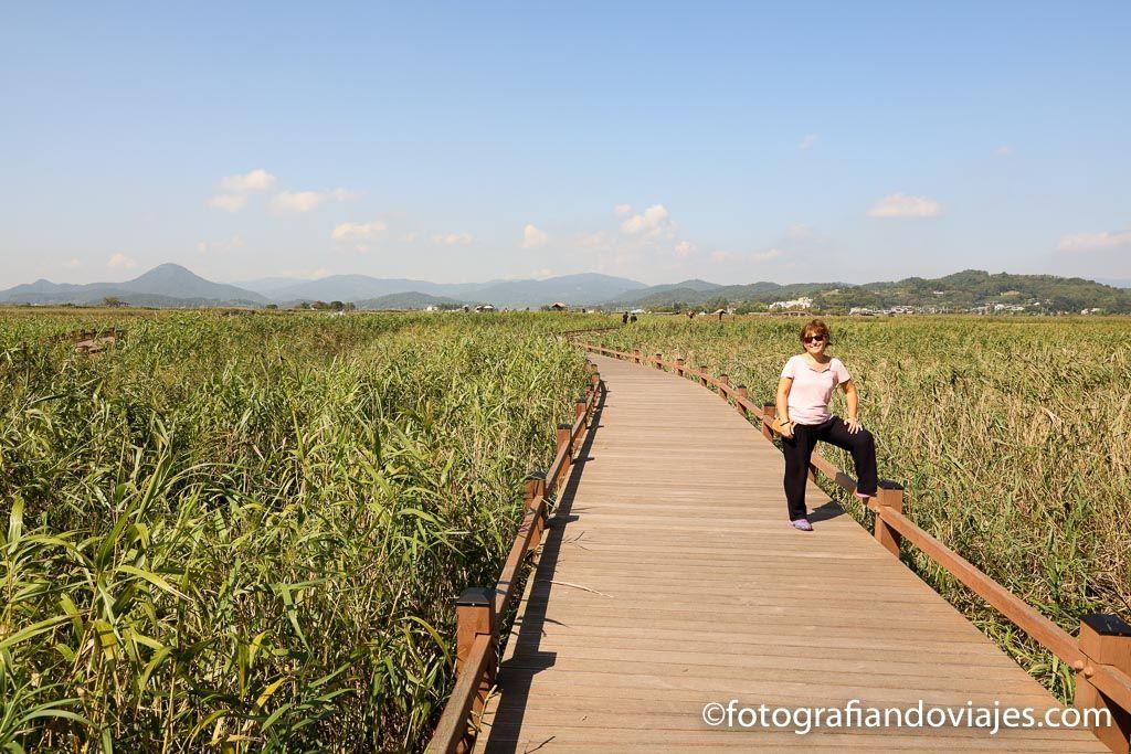 sunsheonman wetland en corea del sur