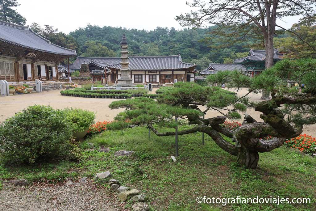 Arboles en el templo coreano
