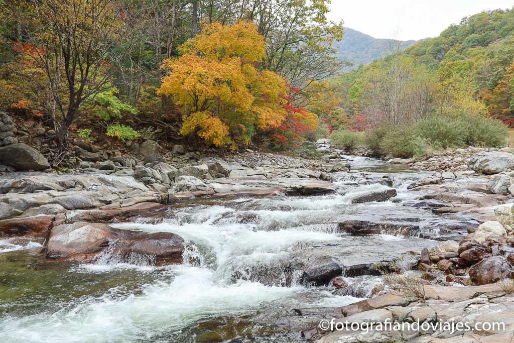 parque nacional odaesan corea del sur