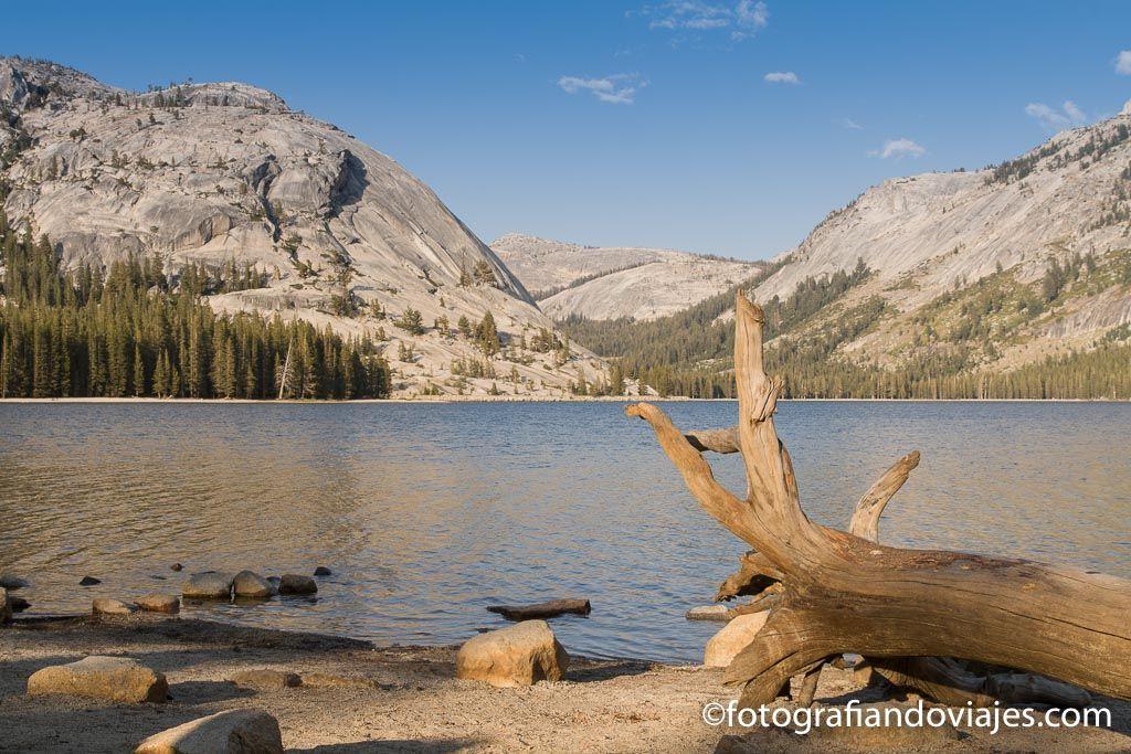 Tenaya Lake que ver en Yosemite