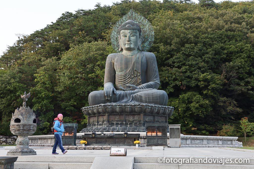Buda Tongil Daebul de la Unificacion en Seoraksan