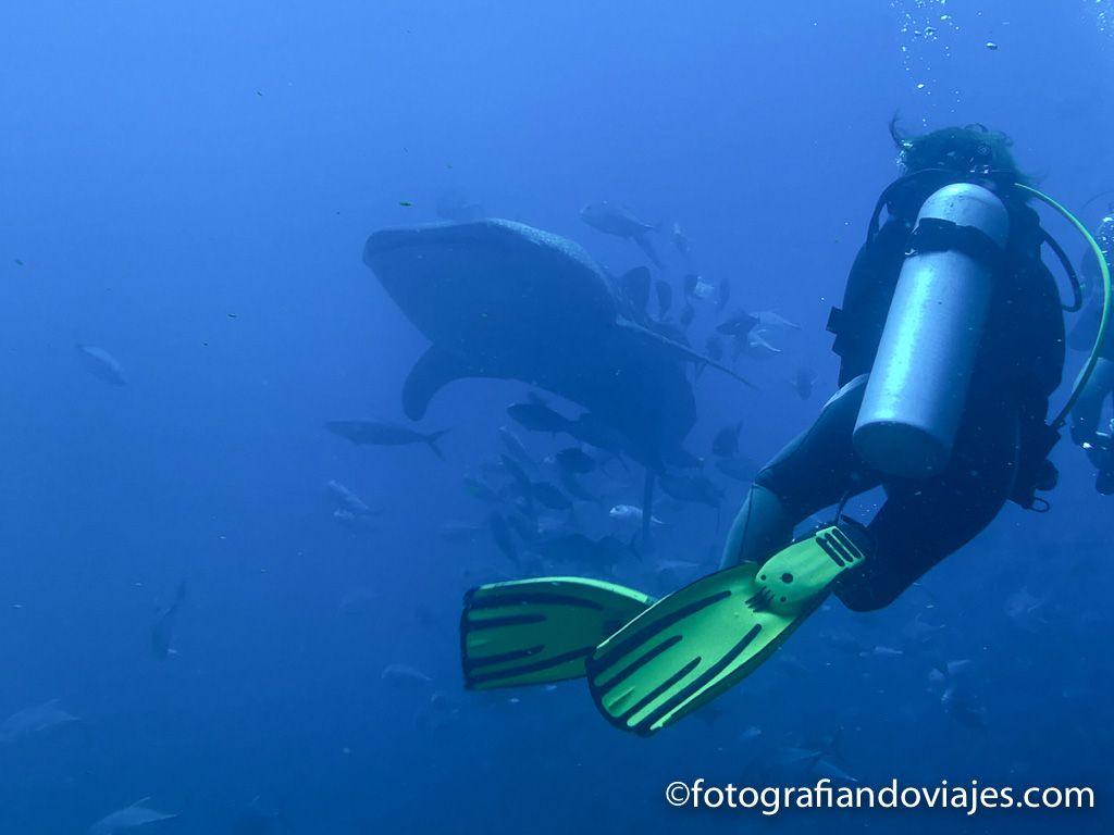 Buceo en mar de Richelieu Rock Tailandia