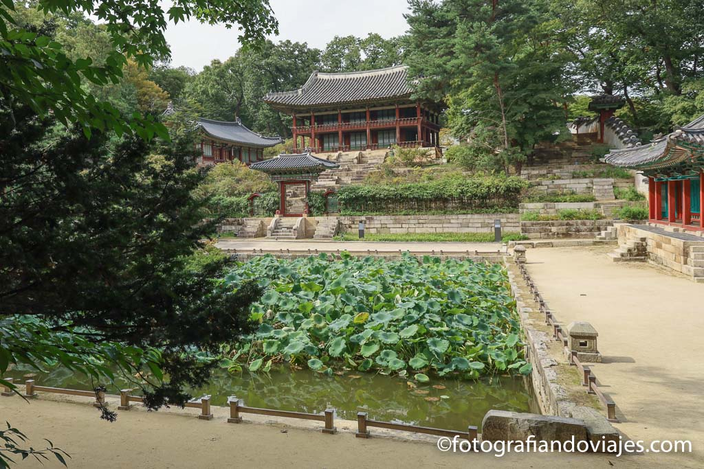 palacios reales de seul Jardín secreto de Changdeokgung