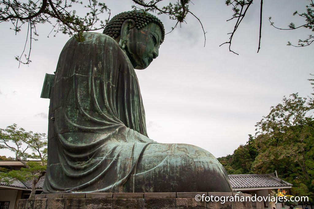 Buda Kamakura Daibutsu templo Kotokuin que ver