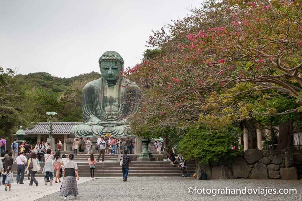 Buda Kamakura Daibutsu templo Kotokuin