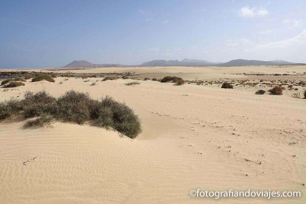 Dunas de Corralejo Fuerteventura