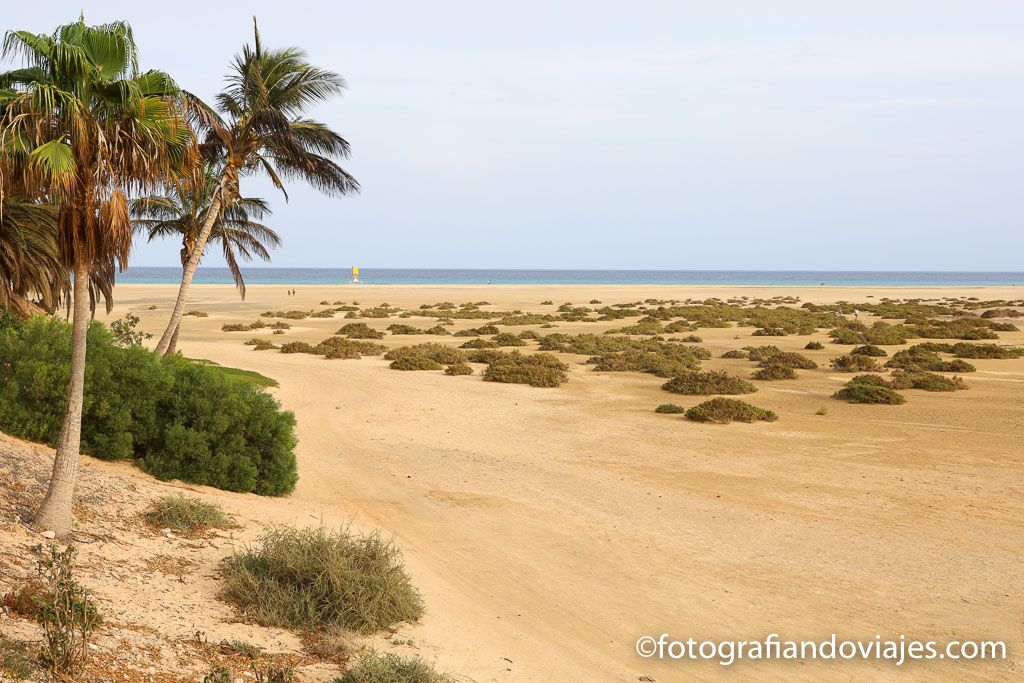 Playas Sotavento Jandia Fuerteventura
