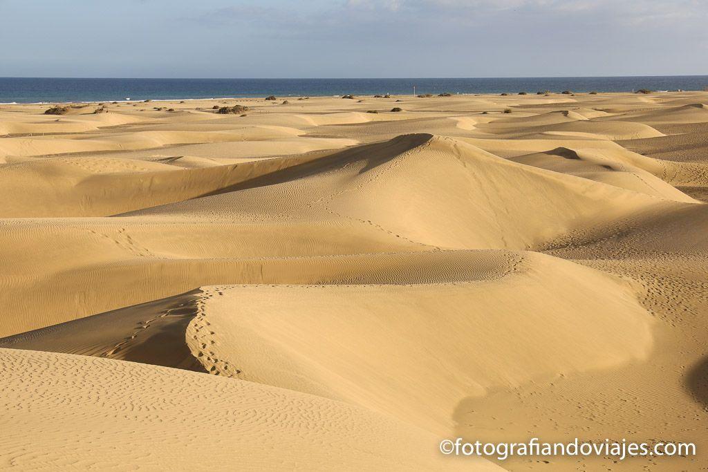 Dunas de Maspalomas sur de Gran Canaria