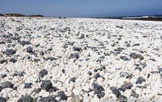 Playa palomitas bajo burra fuerteventura